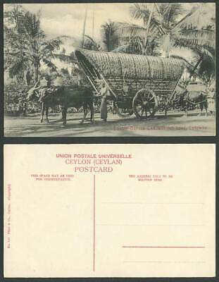 Ceylon Old Postcard Double Bullock Cart with Full Load Street Natives Palm Trees
