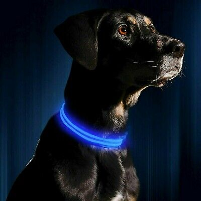 5 Sizes- 6 Colours- USB Rechargeable LED Dog Collar Safety Pet Collars