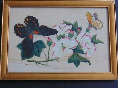 ANTIQUE CHINESE WATERCOLOR PAINTING of BUTTERFLIES & FLOWERS