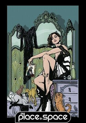 Catwoman Vol 01 Copycats - Softcover