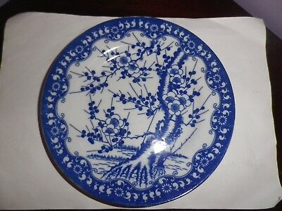 Lovely Japanese Porcelain Blue On White Prunus Tree Design Plate 19 Cms Diameter