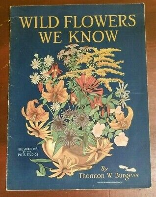RARE 1929 1ST ED WILD FLOWERS WE KNOW by Thornton W. Burgess ~ Great Condition!