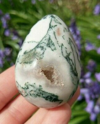 "AAA 2"" TREE AGATE Egg Druzy Pockets! Crystal Stone Healing Reiki Charged 3.3oz!"