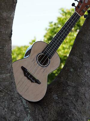 Beautiful Harley Benton Concert Ukulele