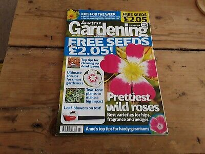 Amateur gardening magazine without seeds Oct 2018