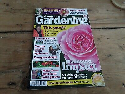 Amateur gardening magazine without seeds dec 2017