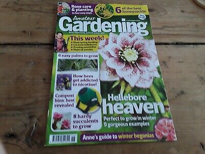 Amateur gardening magazine without seeds nov 2018