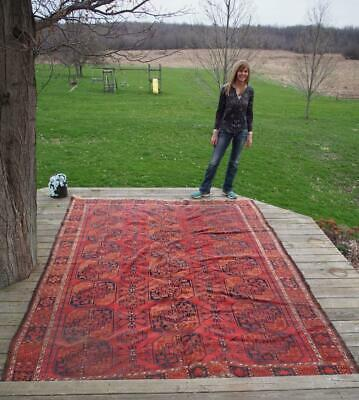 Antique Persian Hand Knotted Wool Rug 10' x 7.5'
