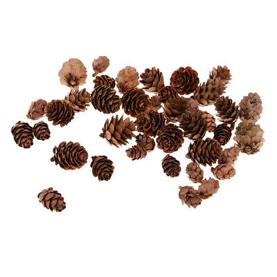 50x Assorted Size Natural Pine Cone for Christmas Ornaments Party Decoration