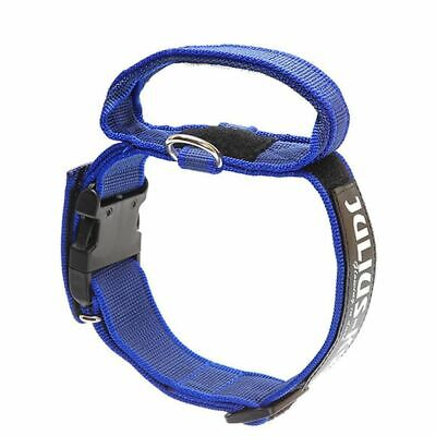 Julius K9 Collare Cani Collarino 40 mm 38-53 cm Nylon Blu 100HA-K-B-2015