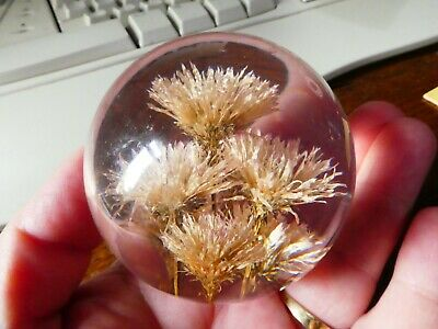 Vintage 1996 Hafod Grange Acrylic Paperweight With Dried Flowers.