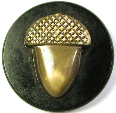 BB Vintage Celluloid Button Large Acorn Design  1 & 7/16""