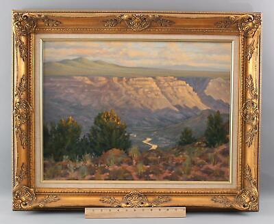 MICHAEL MCGUIRE Rio Grande White Rock Canyon New Mexico Western Oil Painting