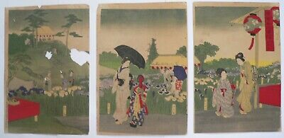 1903 Japanese Original Old Antique Woodblock Print Triptych Beauties with Iris