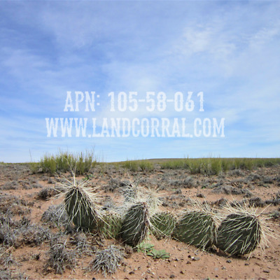 1.3 Acres • Vacant Land • Holbrook, Arizona • Navajo County • APN: 105-58-061