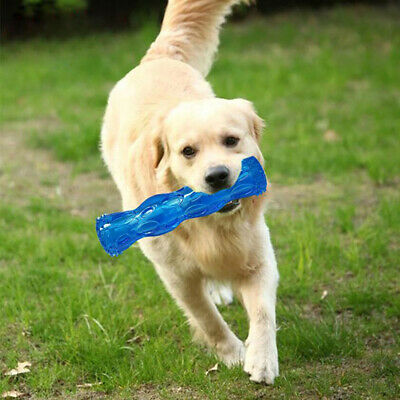 Brushing Stick Pets Bristly Toothbrush Dogs Oralcare World Most Effective LA