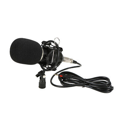 Professional Studio Broadcasting Recording Condenser Microphone H7H9