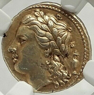 SYRACUSE 310 BC AGATHOKLES Electrum Ancient Greek Coin APOLLO NGC AU Fine Stile