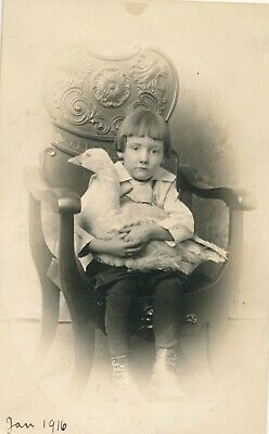 1916 RPPC Puzzled Girl holding Large Stuffed Goose  in Lap Real Photo Postcard