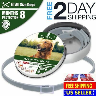 *HOT*DOGS Bayer Seresto Flea And Ticks Collar For LARGER & LARGER CATS--8Months
