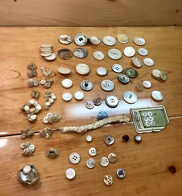 Lot of Antique Shell and Mother of Pearl Assorted Buttons More than 200
