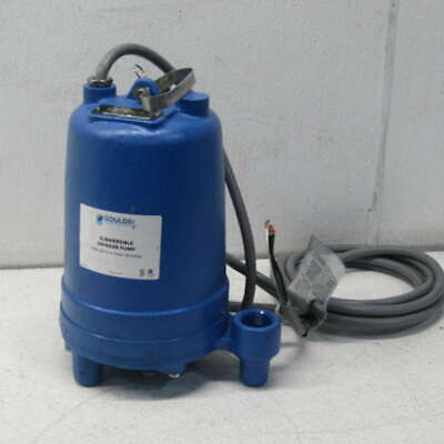 Goulds RGS2012 2 HP 208/230V 1 PH Submersible Grinder Pump