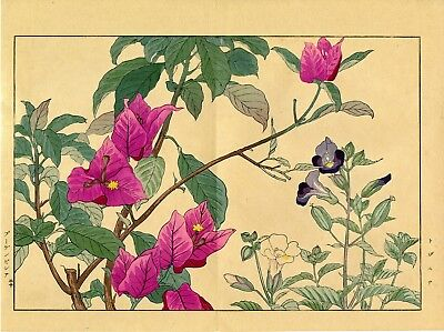 "Lovely KONAN floral woodblock print: ""TORENIA AND BOUGAINVILLEA, 1917"""