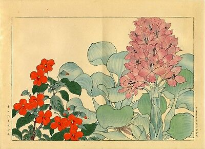 "Marvelous KONAN Japanese woodblock floral print: ""WATER HYACINTHS and IMPATIENS"""
