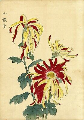 "1893 HASEGAWA Japanese woodblock print: ""SMALL SILVER STAND"" Chrysanthemums"