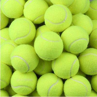 Tennis Balls Yellow Ball Games Dog Pet Toy Pets Bouncing Sports Games Fun Throw