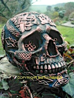 New Design Rubber Latex Mould Moulds Mold To Make Celtic Gothic Skull