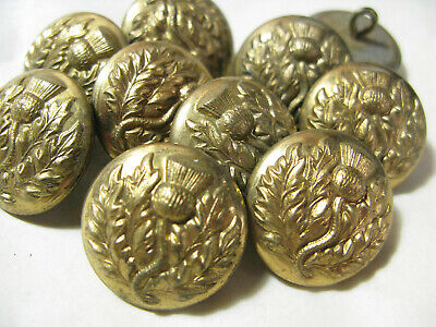 One Fabulous Large Brass Button Of A Thistle Vintage / Antique Vgc 23Mm