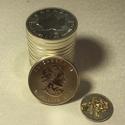 2014 Canadian Maple Leaf Silver Coin | 1 Alaskan Gold Nugget