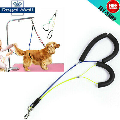 No-Sit Pet Haunch Holder Dog Grooming Restraint Harness Leash Loop for Tables UK