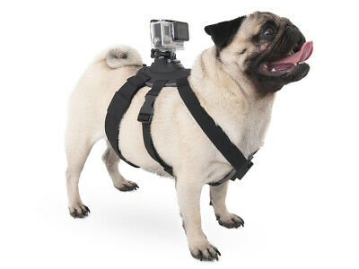 Pet Dog Harness Chest Fetch Strap Belt Mount For GoPro Hero 7 6 5 4 3
