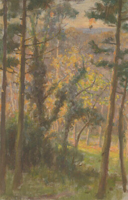 20th Century Oil - Forest at Sunset