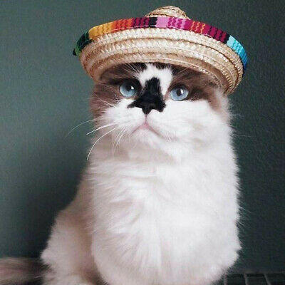 Multicolor Dog Cat Mexican Straw Sombrero Hat Pet Adjustable Buckle Costume 1Pcs