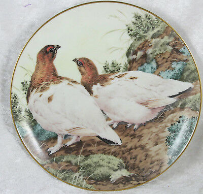 The Forest Year Ptarmigans show off November plumage 7.5 inches across