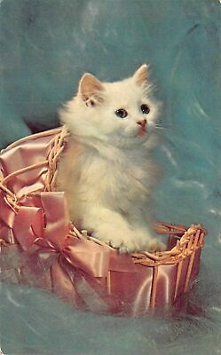C20-5680, Cat In Satin Basket, -.