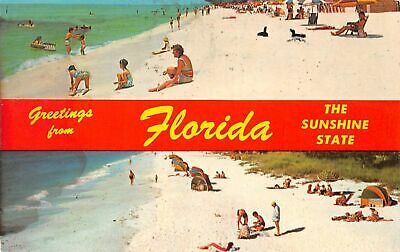 C20-6341, The Sunshine State, Greetings,, Beach, Florida.