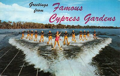 C20-6421, Water Skiing, Cypress Gardens,Florida. Greetings