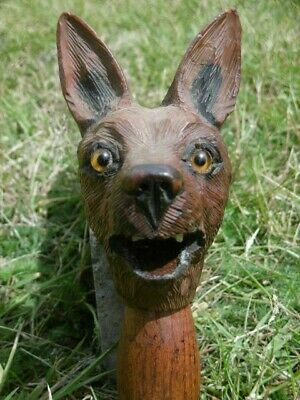 STUNNING 19thc BLACK FOREST OAK CARVED FOX HEAD WITH ORIG. GLASS EYES C.1870's