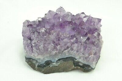 COSMIC: Large Amethyst Cluster Cathedral Druze Natural Mineral Stone Crystal