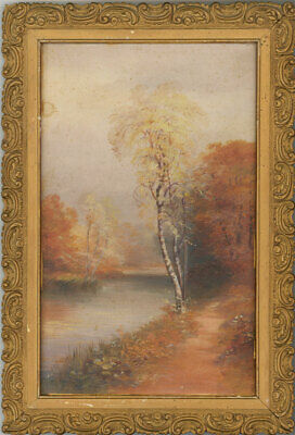 Two Early 20th Century Oil - Silver Birch Trees
