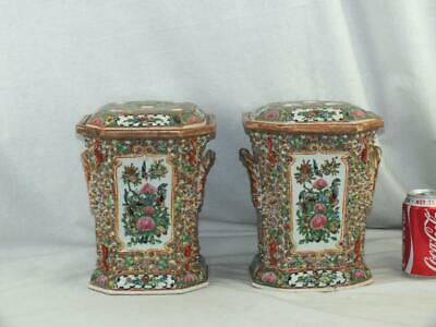Pair Of 19Th C Chinese Porcelain Canton Famille Rose Squirrels Bough Pots