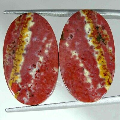 20.80Cts Natural Bloodstone Oval Pair Cabochon Loose Gemstone