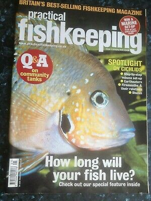Practical Fishkeeping January,Spotlight On Cichlids