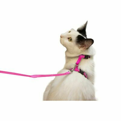 Pink Cat Harness and Leash Dog Leash with Adjustable Nylon Strap Collar 4.5-inch