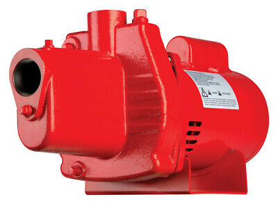Red Lion  Cast Iron  Shallow Well Jet Pump  1/2 hp 12.6 GPM  115/230 volts