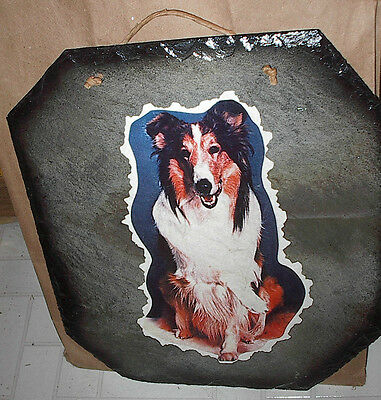 """Large Slate Tile 14""""x13"""" Shetland Collie Dog Decoupaged Picture Wall Hanging"""